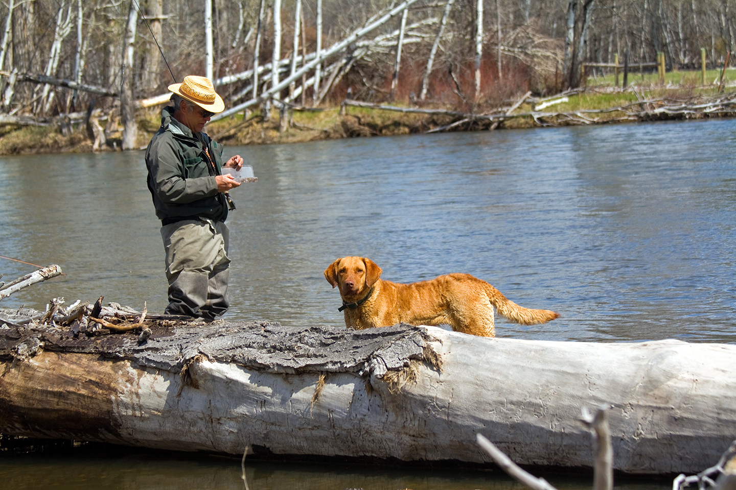 Freda and Jack picking out a dry fly