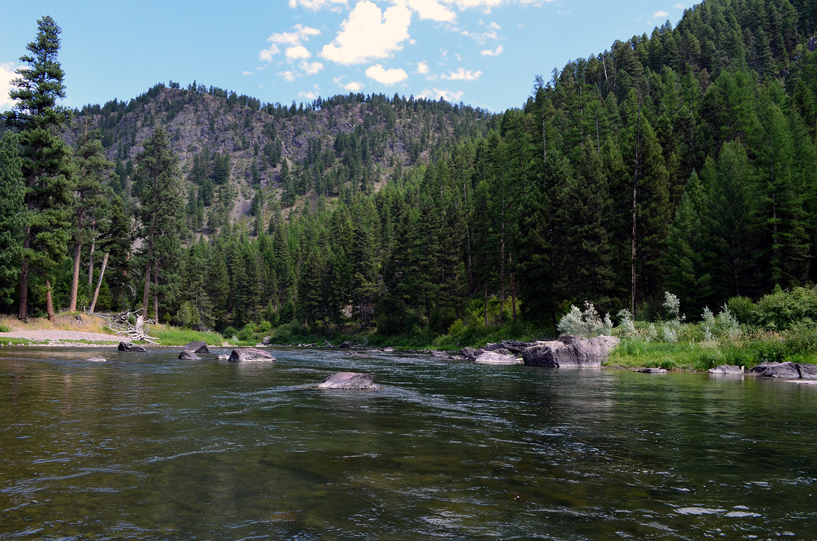 Blackfoot River - Wapiti Waters photo
