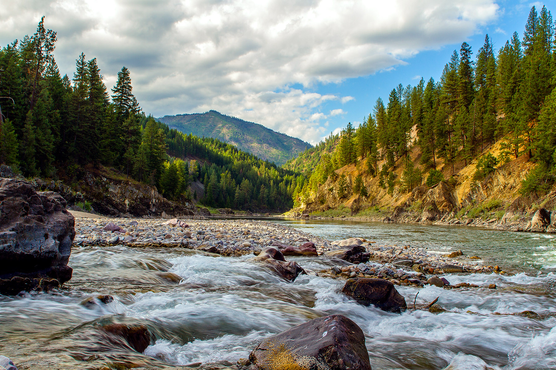 Clark Fork River west of Fish Creek - Wapiti Waters photo by Merle Ann Loman